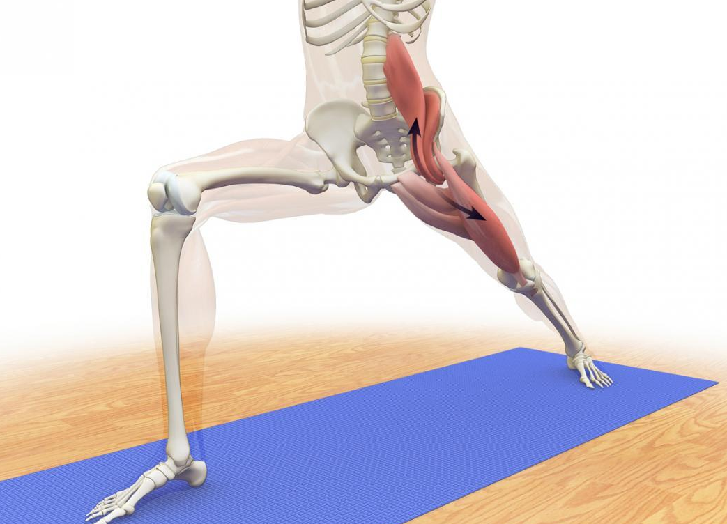 Managing Psoas Imbalance in Athletes with Sports Massage ...